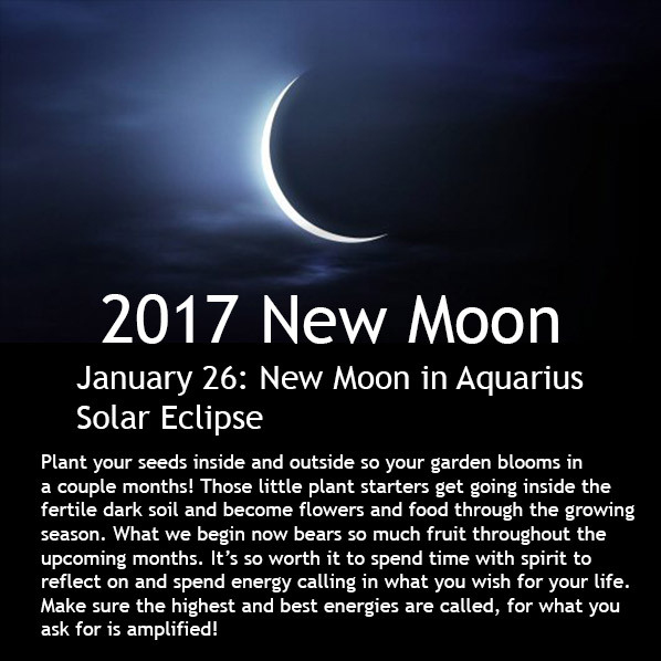 New Moon February